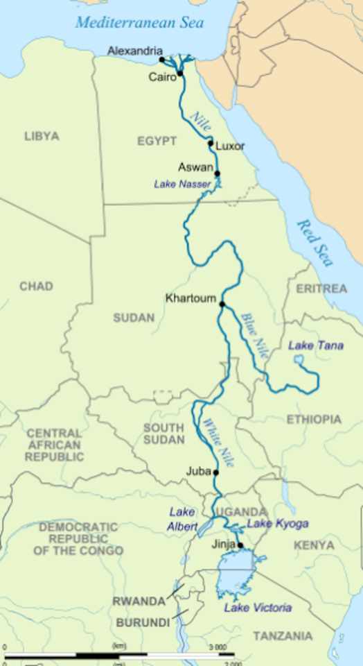 screen shot 2020 10 25 at 12.16.26 am 524x960 1603640881 - Donald Trump, the Mr. Magoo of Geopolitics, Incites Warfare Between Egypt and Ethiopia