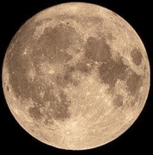 1606860225 31 1606923856 - China Shoots the Moon