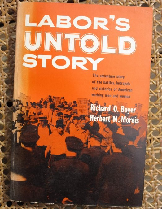 91YuKt3bP L 523x675 1608522108 - Why Workers Everywhere Should Read <cite>Labor's Untold Story</cite>