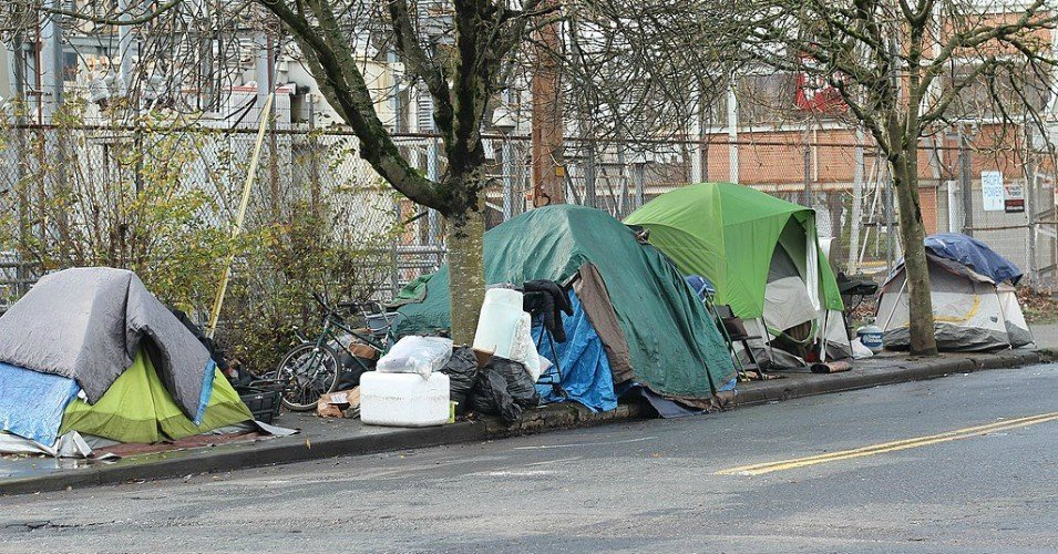 homelessness 1 1608392310 - Homes Guarantee Campaign Demands Housing for All